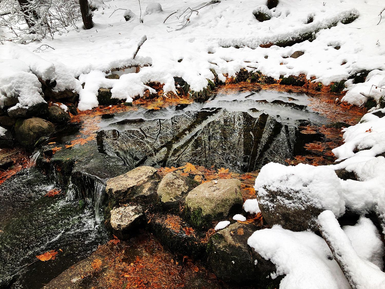Icy reflections at Fern Spring. Photo: Mecia Serafino