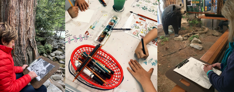 Scenes from Happy Isles: a plein-air charcoal class, kids getting creative with watercolor and field guide cards, and a workshop participant drawing on the center's wildlife diorama for inspiration. Photos: Patti Johns Eisenberg (left), Vanna Barcelos (middle), Kristin Anderson (right)