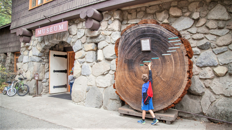 At the Yosemite Museum, opportunities for learning start before you even enter the building. Photo: Yosemite Conservancy/Keith Walklet