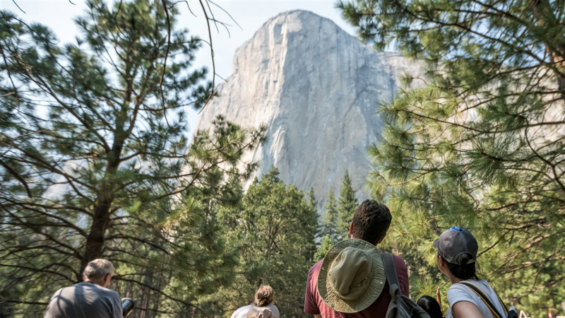 It's hard not to look up when you're surrounding by towering trees and sky-scraping cliffs. The grant-funded Ask a Climber program enhances your Yosemite granite-gazing through opportunities to zoom in on the walls and learn from climbing rangers. Photo: RV Project/Spenser Tang-Smith
