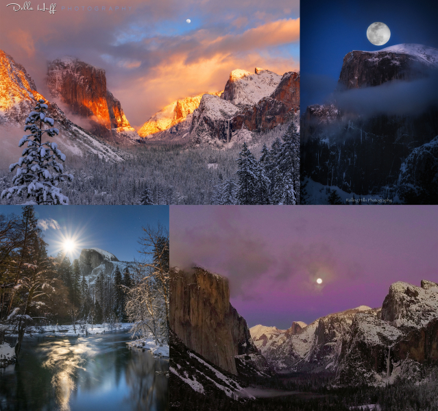 Moonlit magic in the Valley. <br>Clockwise, from top left: Della Huff; Robert Pick; Jacqueline Cervantes; Ryan Fitzsimons.