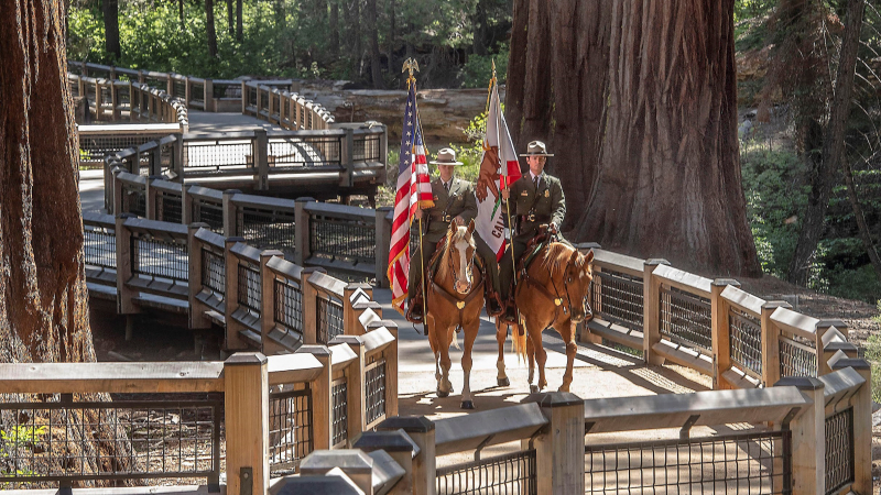 Yosemite National Park, Yosemite Conservancy and public officials celebrated the restoration of Mariposa Grove during a dedication ceremony on June 14, 2018. Photo: Yosemite Conservancy/Al Golub