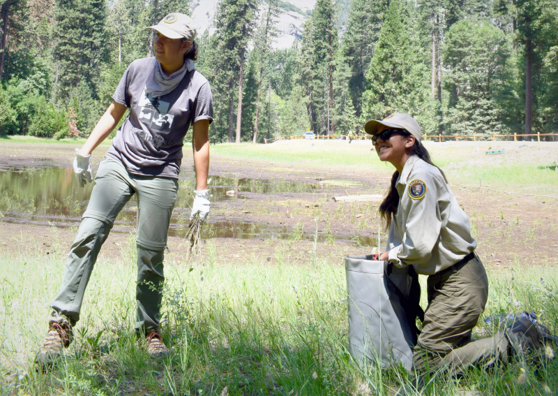 Mirella (left) and Leslie (right), worked together to lead a stewardship project for middle schoolers. Photo: © Yosemite Conservancy/Ryan Kelly